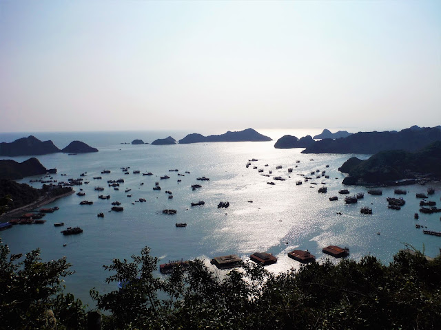 view bay cannon fort cat ba halong bay vietnam