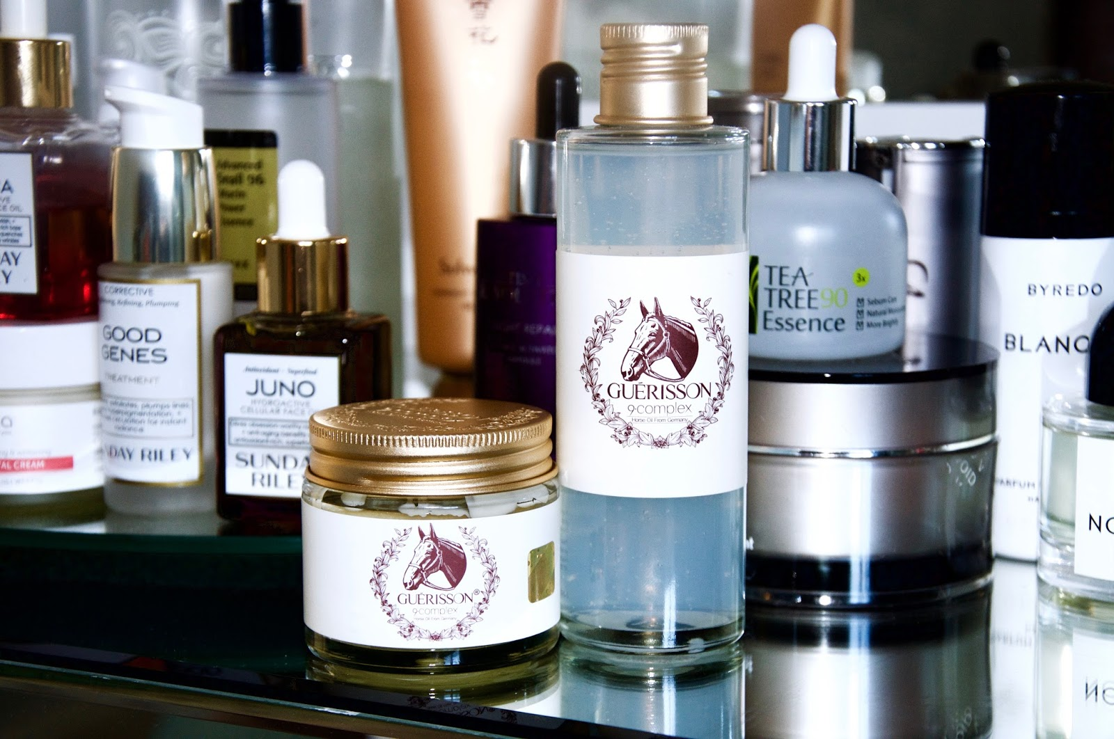 HORSE OIL, AN UNSUNG HERO FOR DRY SKIN: THE GUERISSON 9•COMPLEX HORSE OIL CREAM AND ESSENCE REVIEW