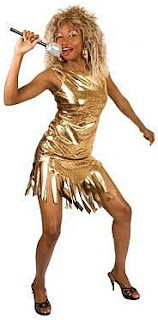 Tina Turner Gold Costume