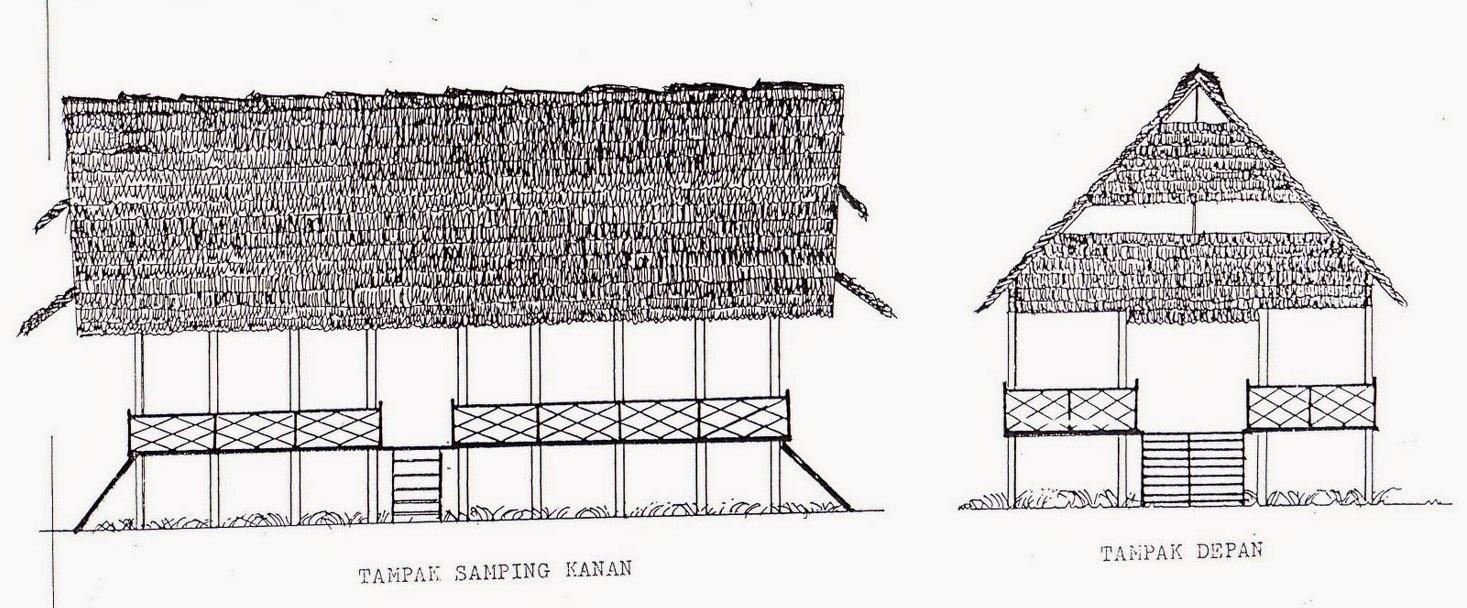 940 Gambar Mewarnai Rumah Adat Maluku Gratis Gambar