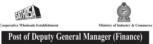 Deputy General Manager (Finance)