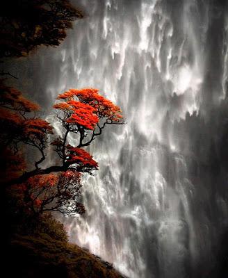 Hermosos paisajes cascadas wallpapers