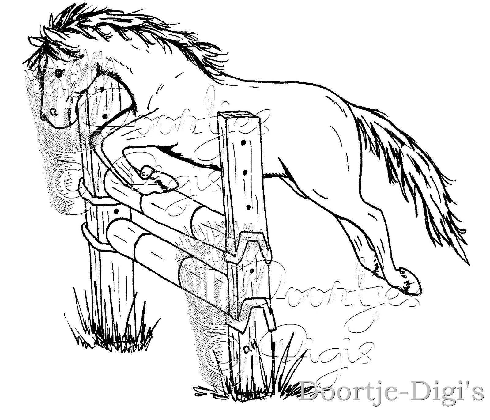 Paard En Veulen Kleurplaat Dora Knutselhoekje Paarden Horses