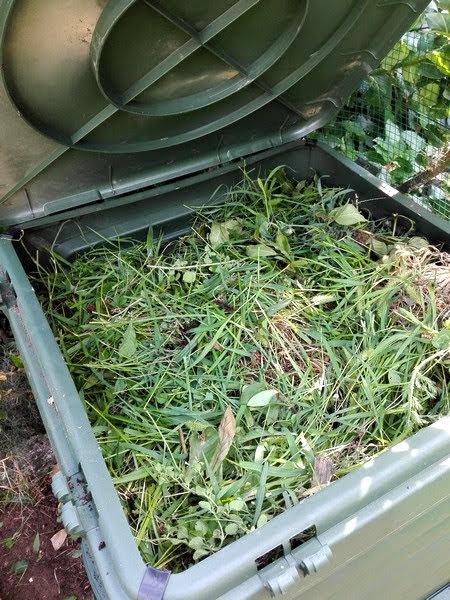 Che cos'è il compost biologico