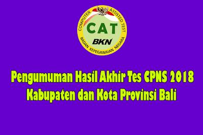 Pengumuman Hasil Akhir Nilai SKD-SKB Kabupaten dan Kota Provinsi Bali CPNS 2018