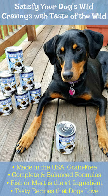 doberman mix rescue dog taste of the wild
