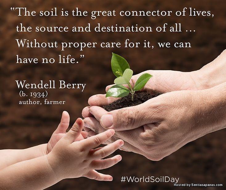 Sambutan Hari Tanah Sedunia, World Soil Day