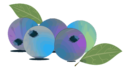 clipart buah blueberry