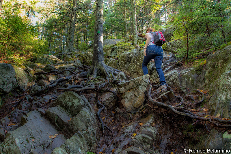 Borestone Mountain Summit Trail Tree Root Steps Maine Hiking Moosehead Pinnacle Pursuit