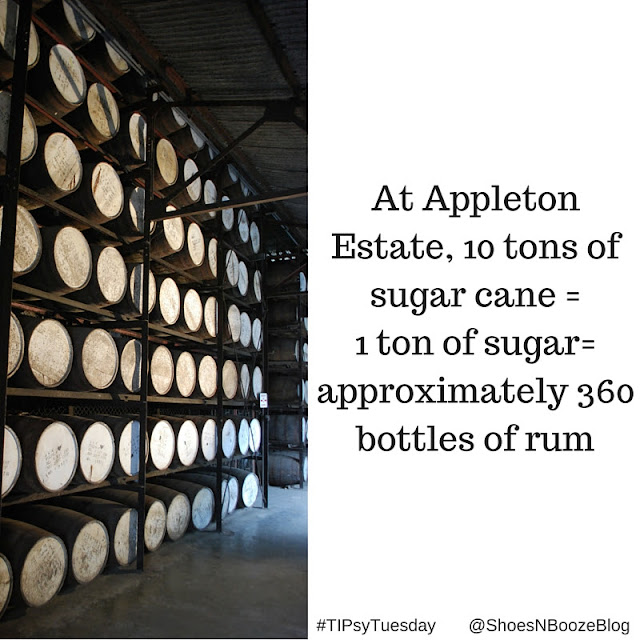 1 ton of sugar makes 360 bottles of rum- TIPsyTuesday Shoes N Booze