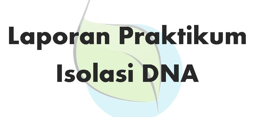 Contoh Laporan Praktikum Genetika Isolasi Dna Tumbuhan Paman Biology