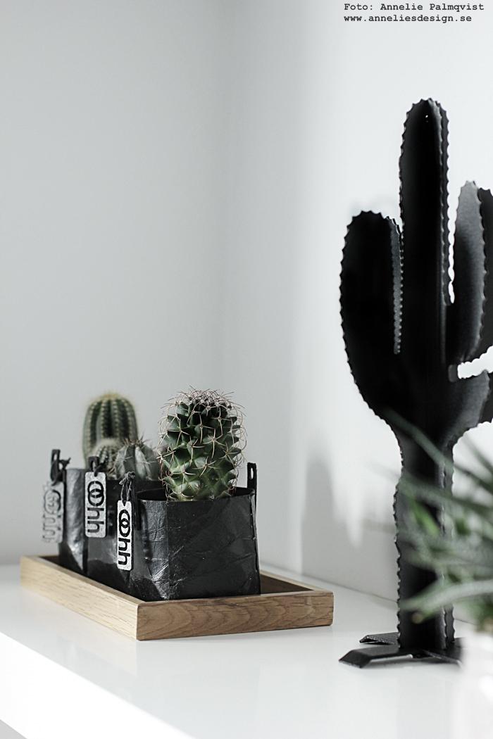 kaktus, kaktusar, minikaktus, minikaktusar, fat, trä, trärent, 3D kaktus, annelie palmqvist, annelies design, webbutik, webbutiker, webshop, inredning, nettbutikk, nettbutikker, hylla, svart och vitt, svart, svarta, svartvit, svartvita, detalj, detaljer,