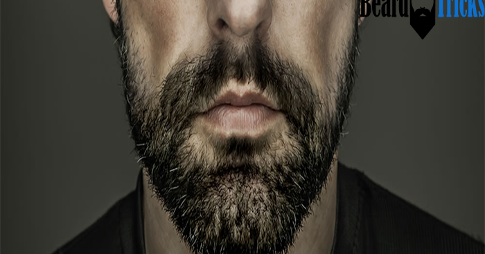 the 3 stage beginner 39 s guide to growing a beard beard tricks. Black Bedroom Furniture Sets. Home Design Ideas