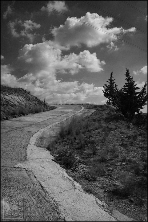 fotografia,paisaje,murcia,cipres