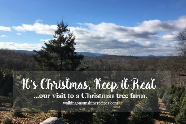 It's Christmas, Keep it Real - Our Visit to a Christmas Tree Farm from Walking on Sunshine.