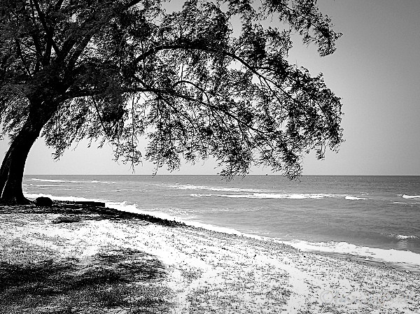 Digital Moments: Quiet On The Beach 04