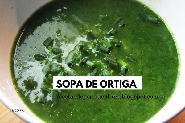 Recetas de Cocina para Comidas Ricas y Sanas Sopa de Ortiga