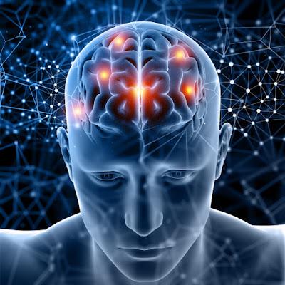 Manfaat Makan Bawang Putih menjaga kesehatan otak