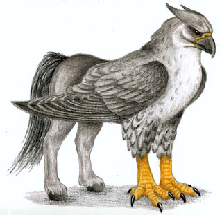 http://confanon.wikia.com/wiki/File:Hippogriff7.jpg