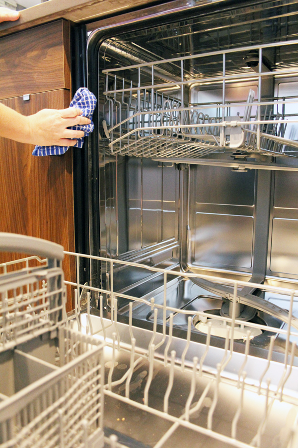 Wipe down dishwasher seal