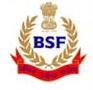 BSF-Vacancy