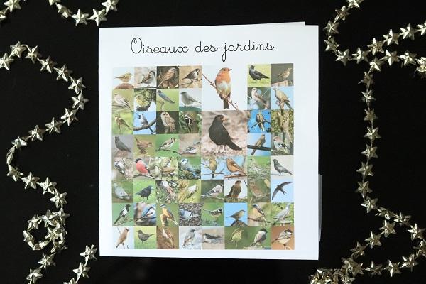 cartes-nomenclature-oiseaux-des-jardins