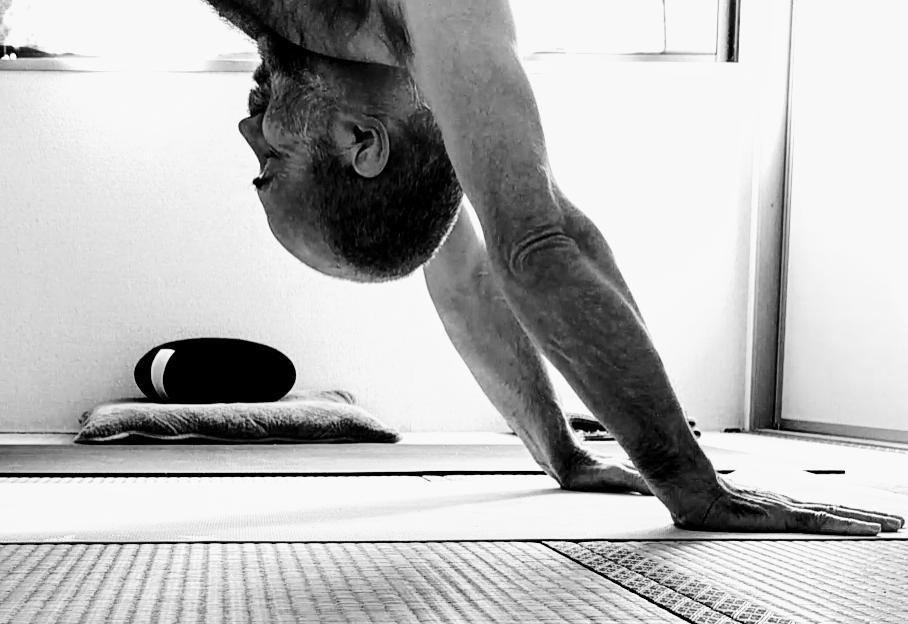 Ashtanga Vinyasa Krama Yoga and Beyond   at home