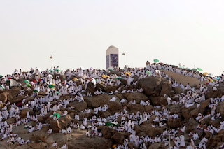 Deaths of Egyptian pilgrims to 80 cases