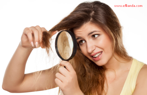 how to repair damaged winter hair naturally