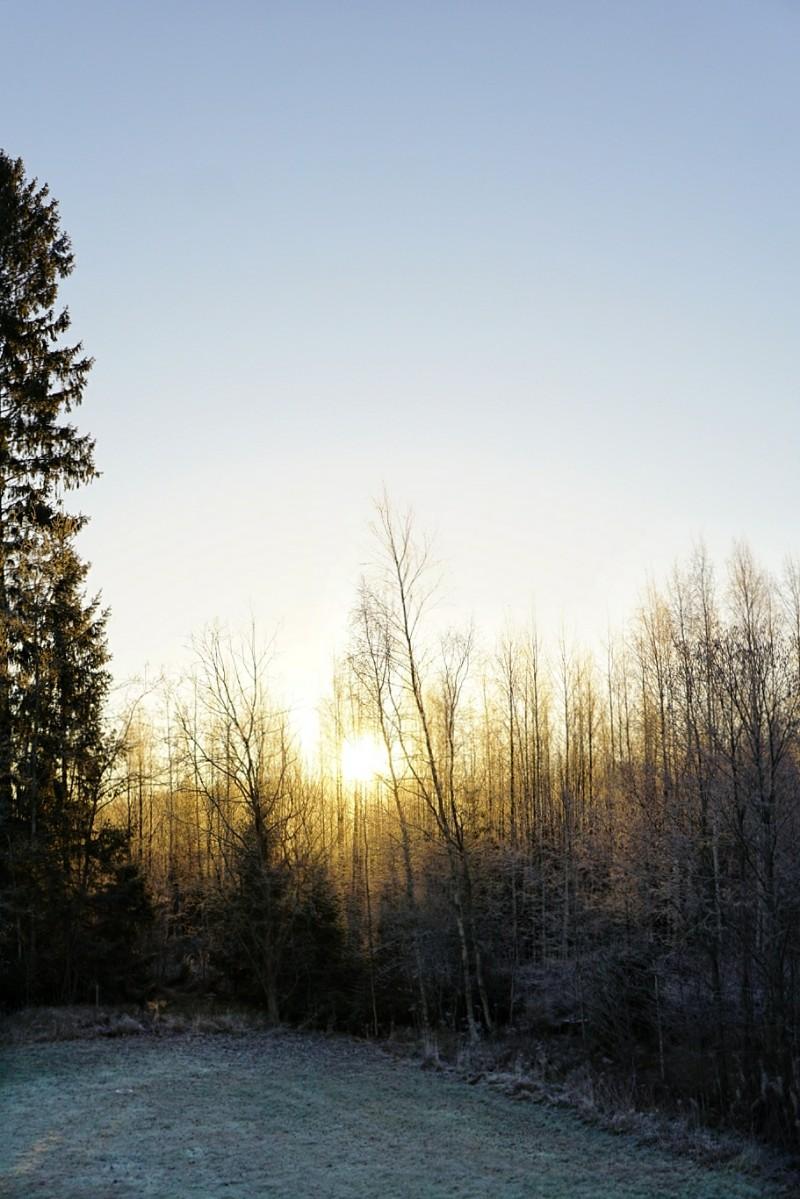 Auringonnousu, aamu, marraskuu