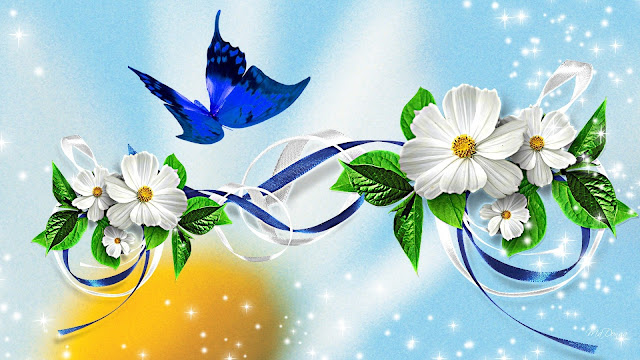 Butterfly backgrounds 9