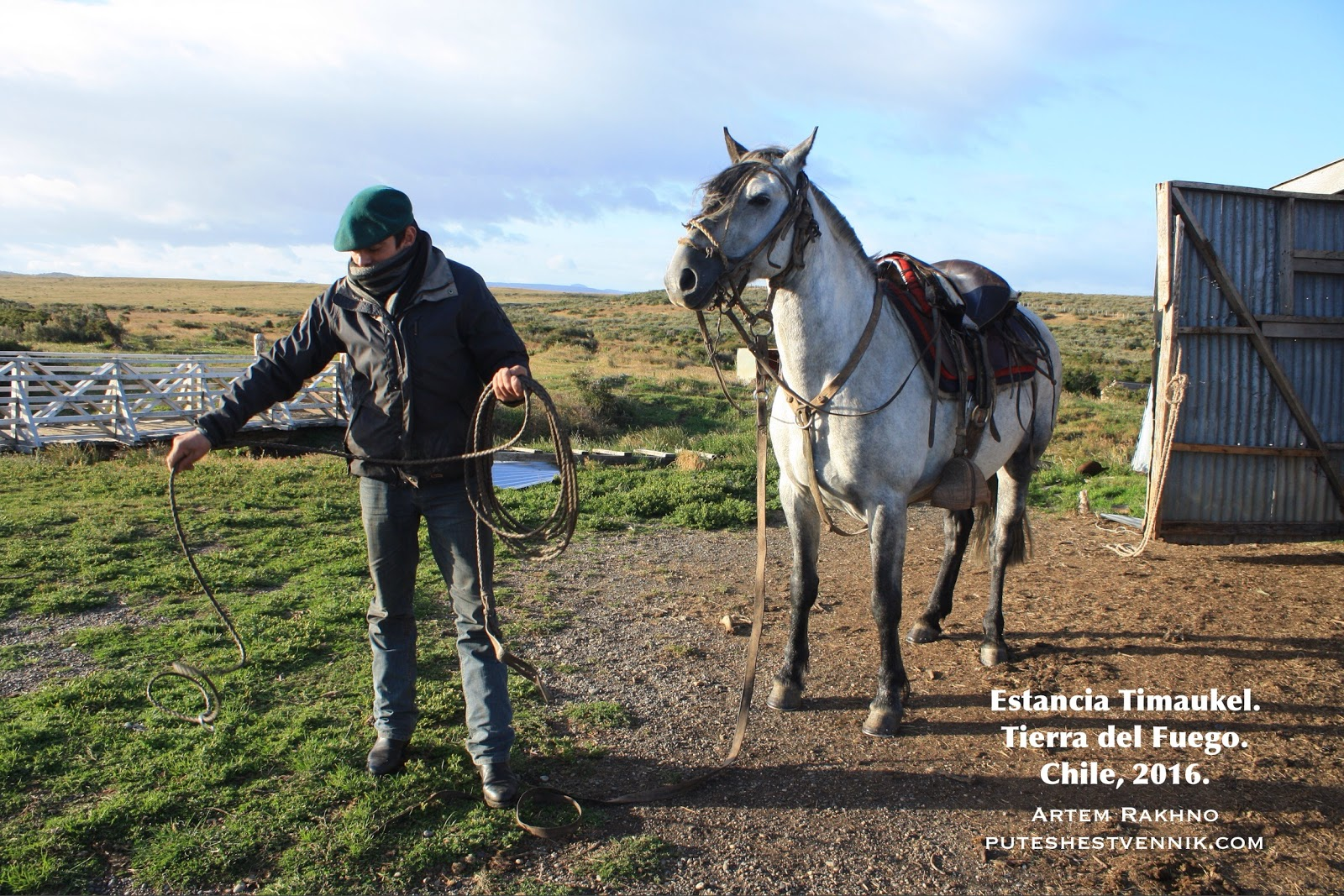 Лошадь и гаучо с лассо