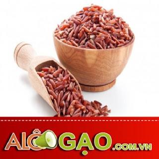 gia gao lut tai alogao.com.vn