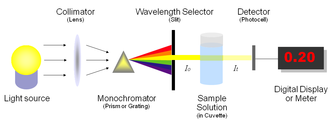 absorption spectroscopy to determine the molar