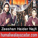 http://www.humaliwalayazadar.com/2016/10/zeeshan-haider-najfi-nohay-2017.html
