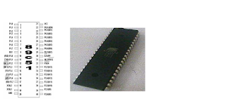Fig. 1.1a Beck (1996) and 1.1b (live picture) External architecture of AT89C51/AT89C52 microcontroller