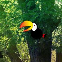 WowEscape Bio Forest Escape