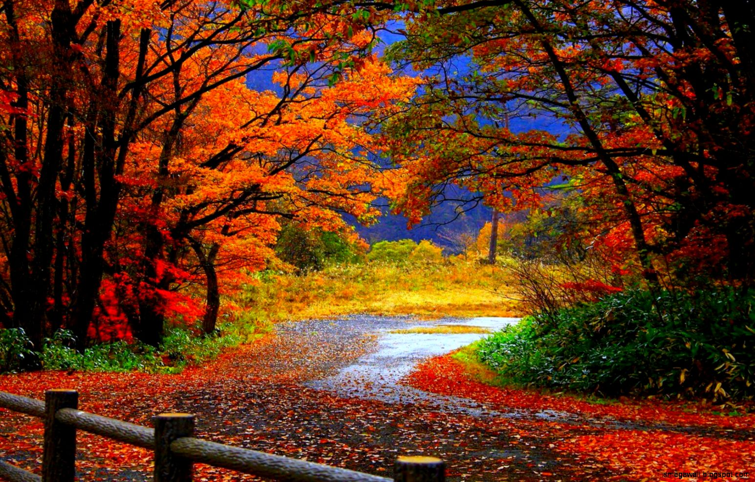 Autumn Wallpaper Hd Widescreen | Mega Wallpapers