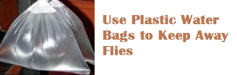 Use Plastic Water Bags to Keep Away Flies