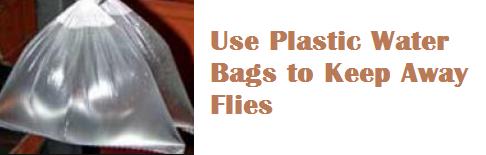 Use Plastic Water Bags to Keep Away Flies