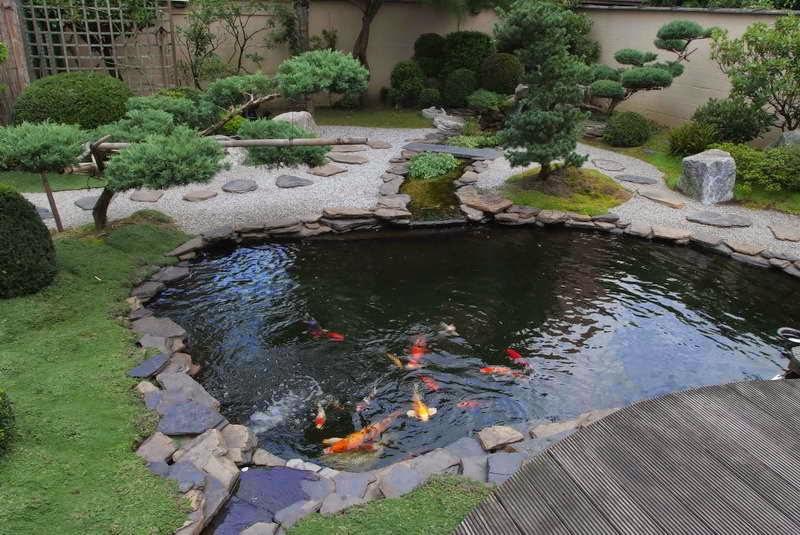 kolam ikan taman depan rumah model jepang