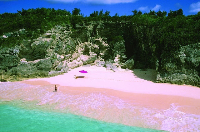 Багамы-Остров-Харбор