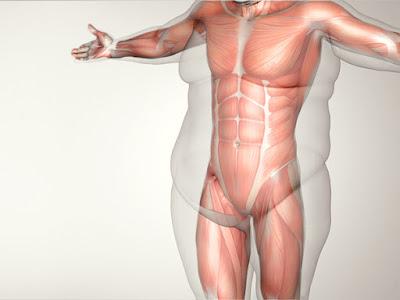 é possível voltar a ter um corpo saudável