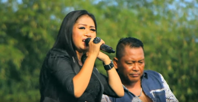 New Pallapa Update Lagu - Seujung Kuku ( Lilin Herlina ) Dangdut Koplo