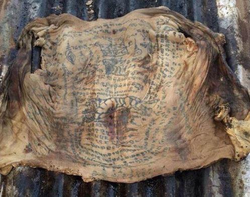 Pakar Arkeologi Thailand Temui Mayat Pengamal Ilmu Hitam
