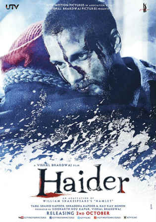 Haider 2014 BluRay 450MB Full Hindi Movie Download 480p Watch Online Free bolly4u