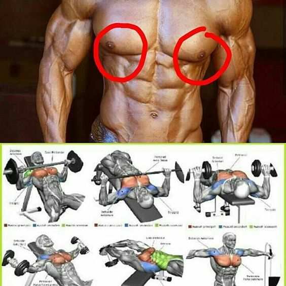 Workout Routines & Fitness Training Programs - Body-Workouts