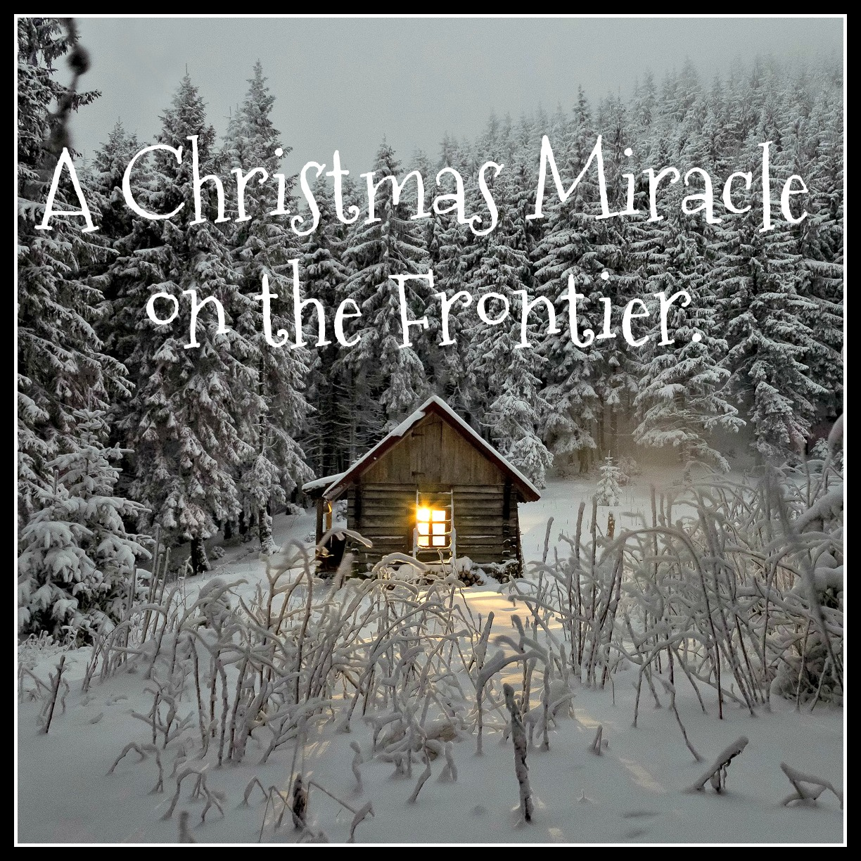 a christmas miracle 'a christmas miracle' is a charming tale that shows how dreams can come true on christmas read this and other christmas stories.