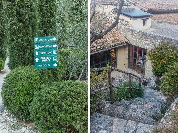Jak powstaje oliwa z oliwek? Frantoio del Poggiolo