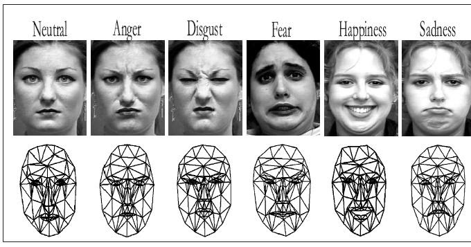 Facial expression analysis happiness